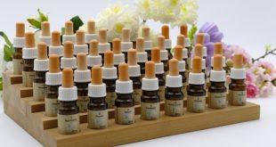 homeopatimedicinen