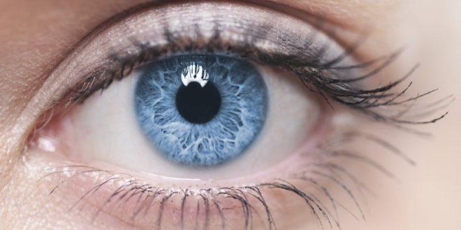 Blue eye, blåbär, lutein