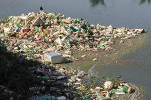 miljöfokus