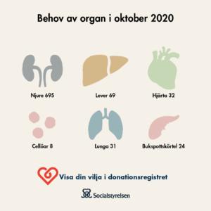 donation infografik behovet av organ oktober 2020